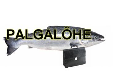 palgalc3b5he2